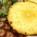 Die wichtigsten Ernährungsprogramme Teil 4: Monodiäten
