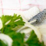 Sahnehering oder Heringsstipp (Low Carb)